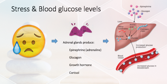 stress and blood glucose level