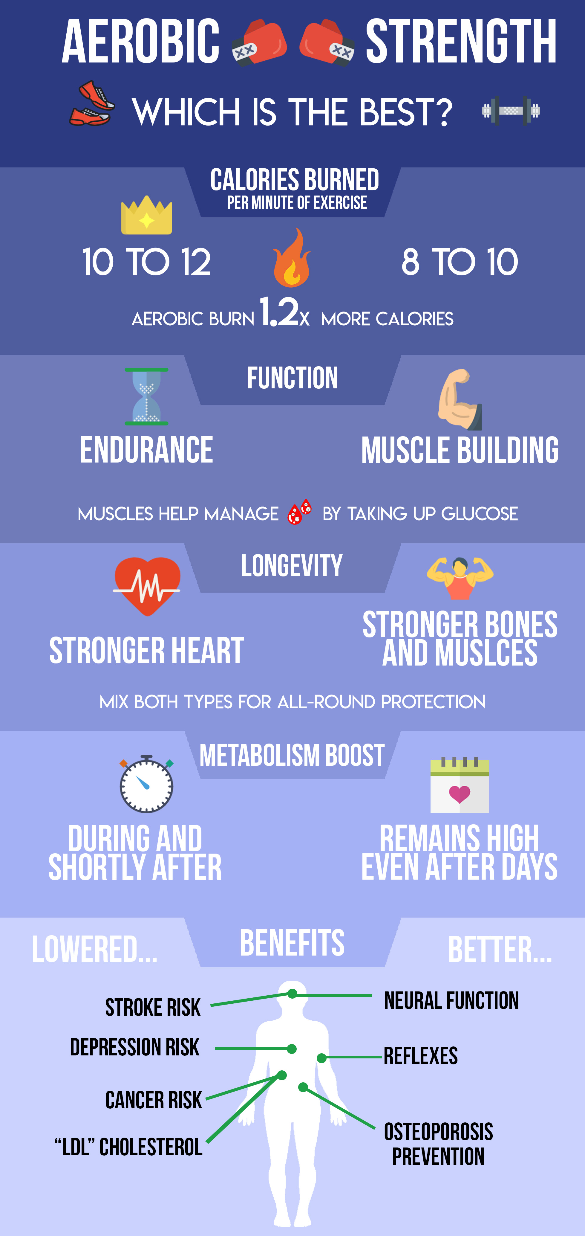types of exercise inforgraphic