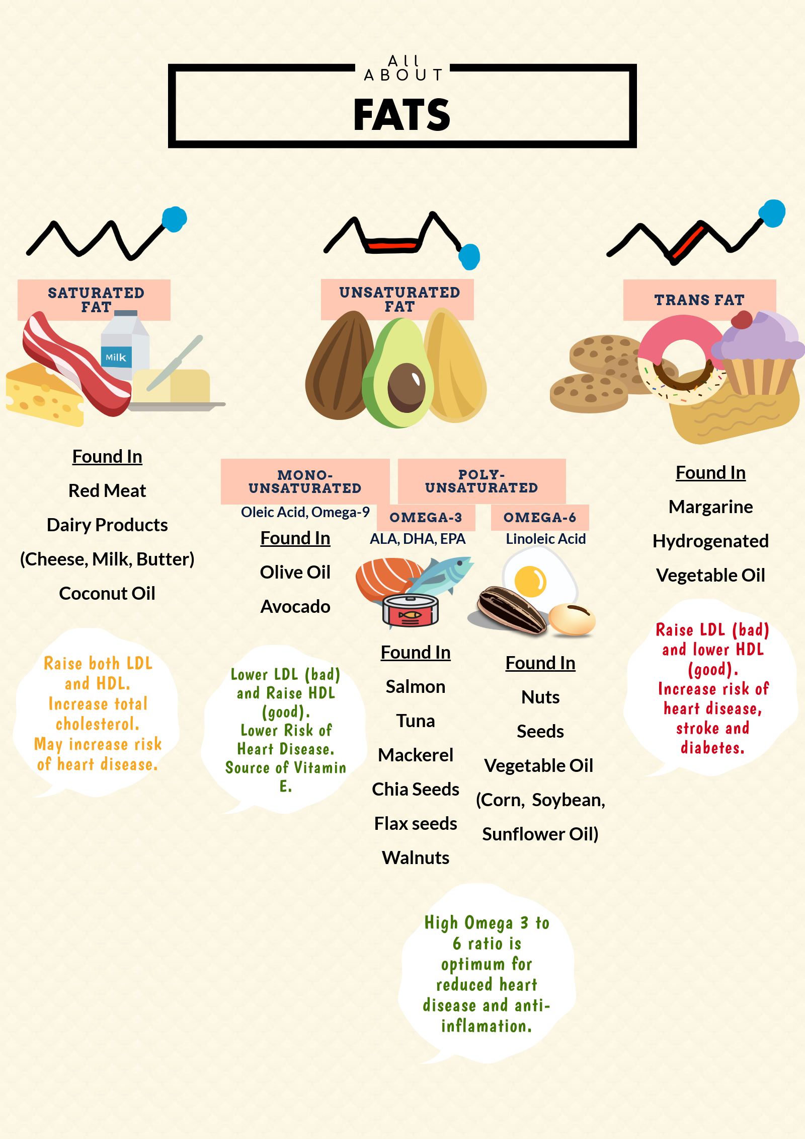 Types of fat - infographic