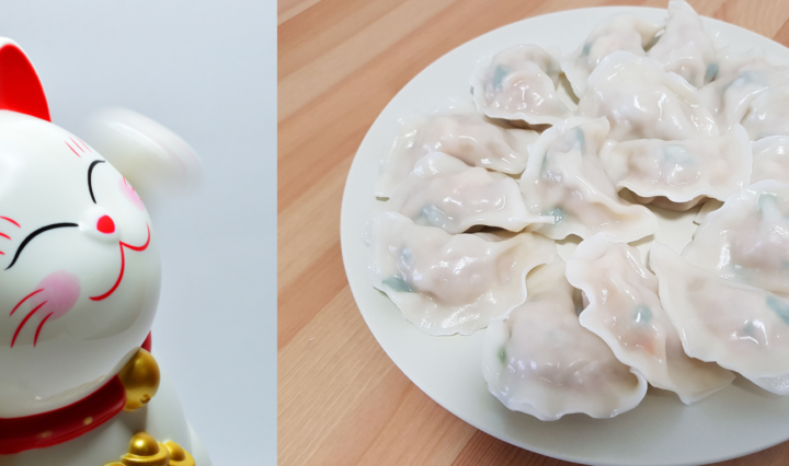 Prawn and pork vegetable dumplings